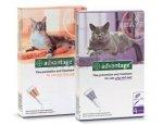 Antiparazitní spot-on ADVANTAGE pro KOČKY a KRÁLÍKY 4ks do 4kg (oranžový)